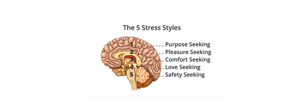 What's Your Stress Style?