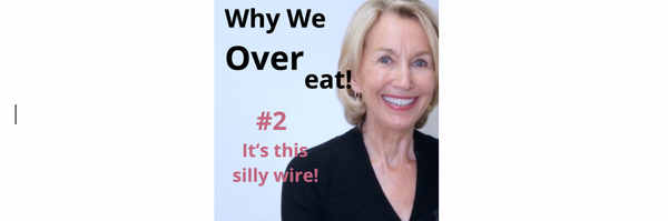 Why We Overeat #2 - It's A Silly Wire!