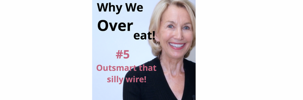 Why We Overeat! #5 - It's A Wire!
